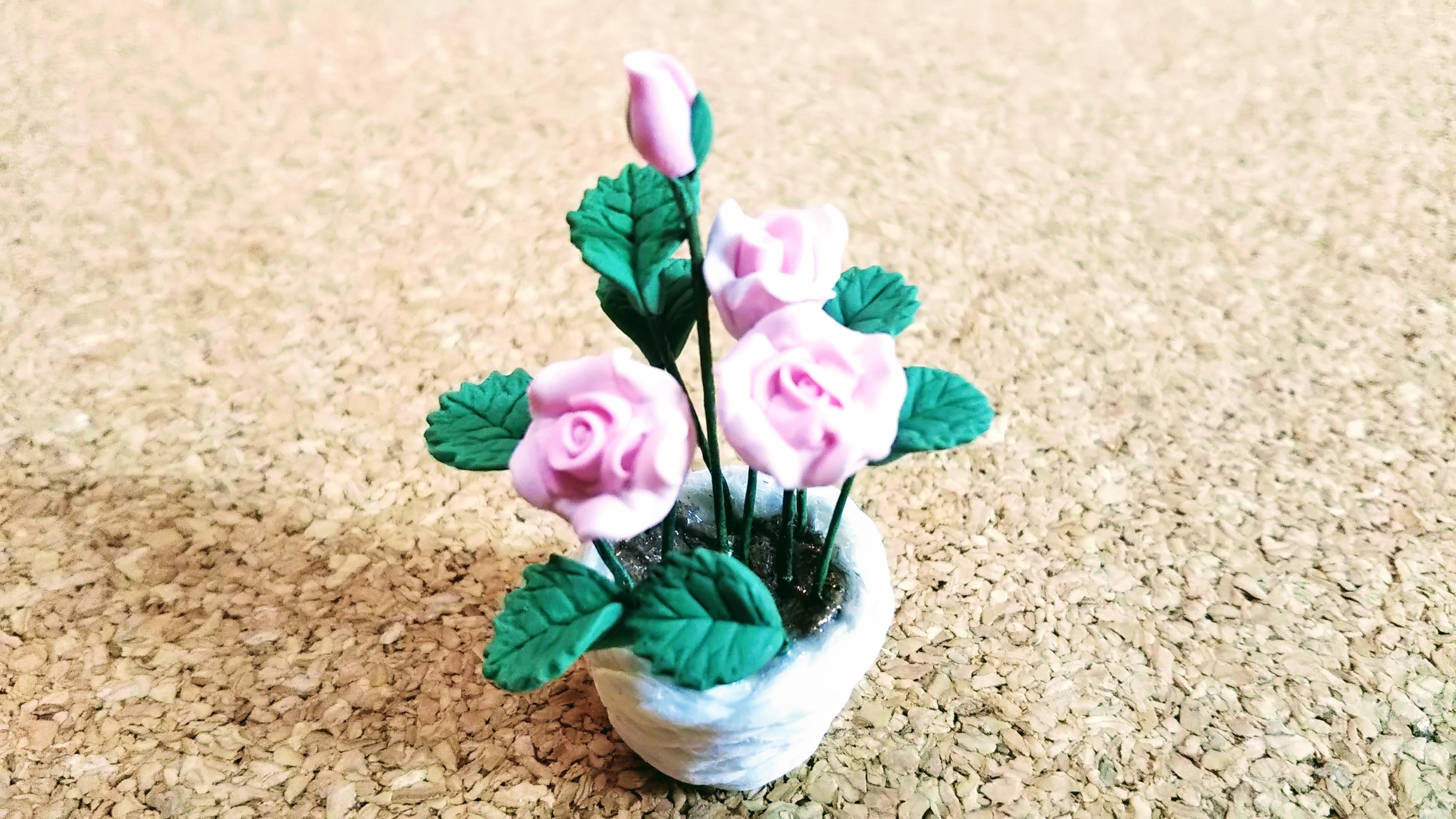 ミニチュアの薔薇の鉢植え